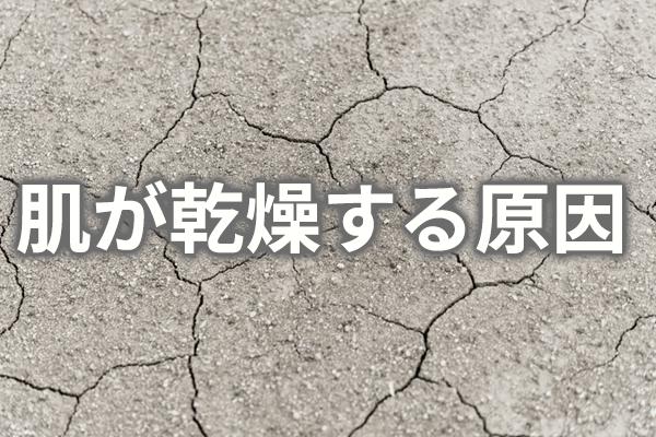 dry-skin02