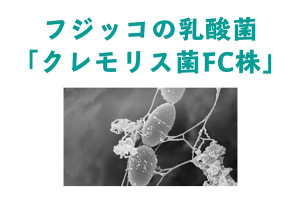 fujikko04