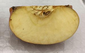 KIRARIKA(キラリカ)を塗ったリンゴ