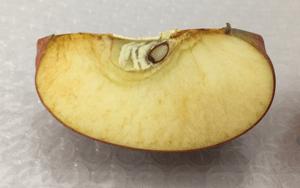 何も塗ってないリンゴ