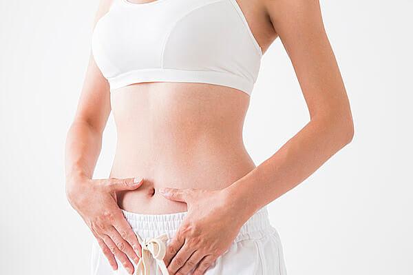 腸の働きが良くなることで 太りにくい体質に変化します