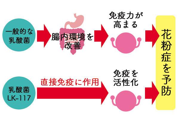進化系乳酸菌と一般的な乳酸菌の違い
